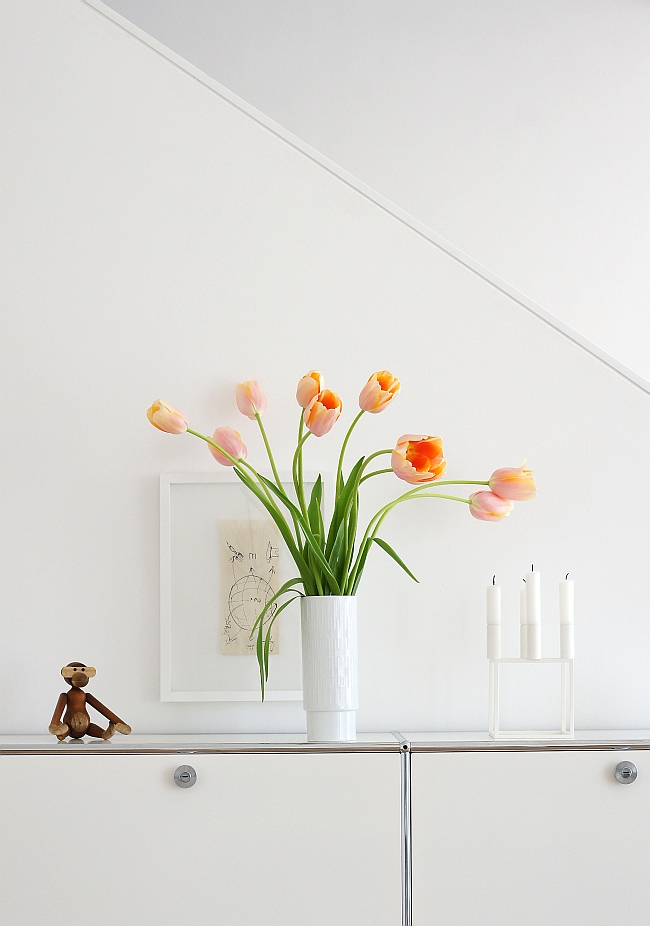French tulips | photo: Sabine Wittig