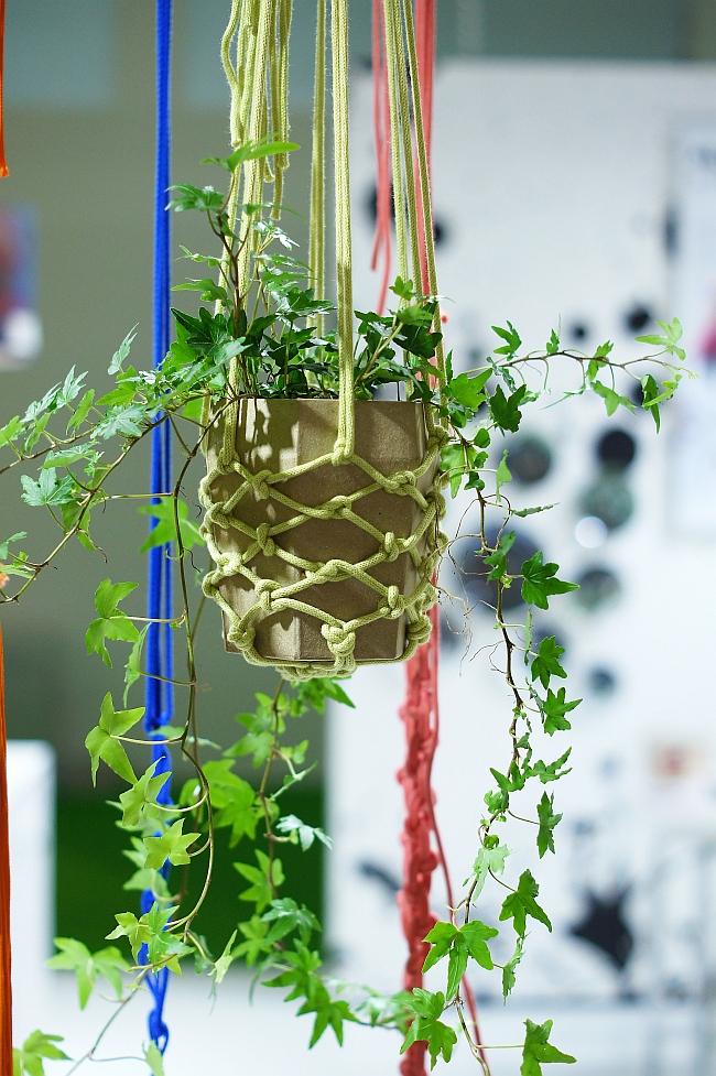 Makramee für Hängepflanzen | Foto: Sabine Wittig