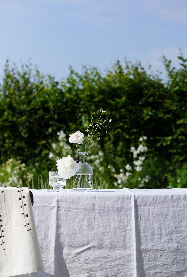 Im Garten | Foto: Sabine Wittig
