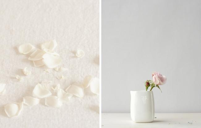 Rosen | Fotos: Sabine Wittig