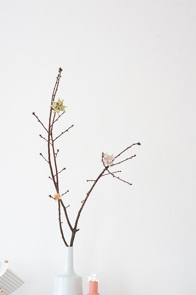 Fröbelsterne | Foto: Sabine Wittig