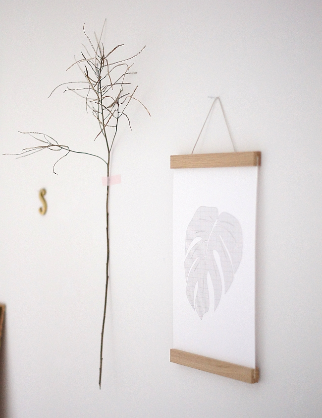 A4 Druck Philodendron