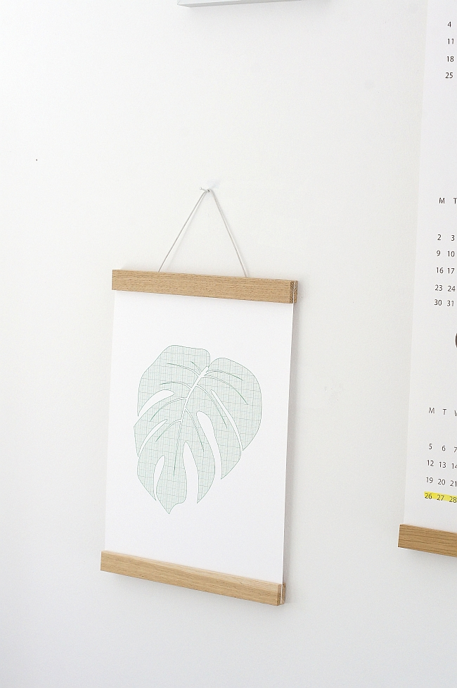 DIN A4 Poster Philodendron | Foto: Sabine Wittig