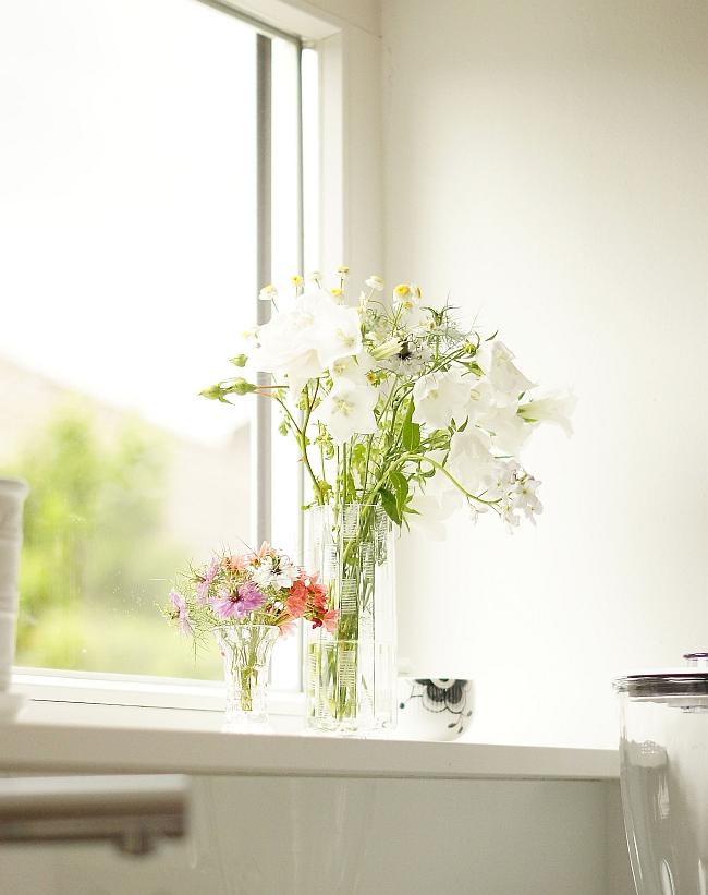 Sommerblumen in der Küche | Foto: Sabine Wittig