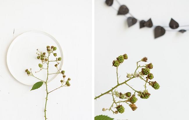 Herbststyling mit Brombeeren | Foto: Sabine Wittig