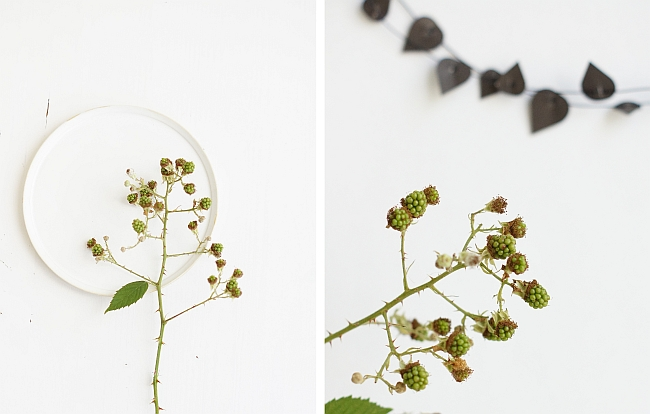 Herbststyling mit Brombeeren | Fotos: Sabine Wittig