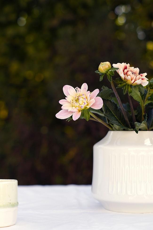 Dahlienblüten | Foto: Sabine Wittig