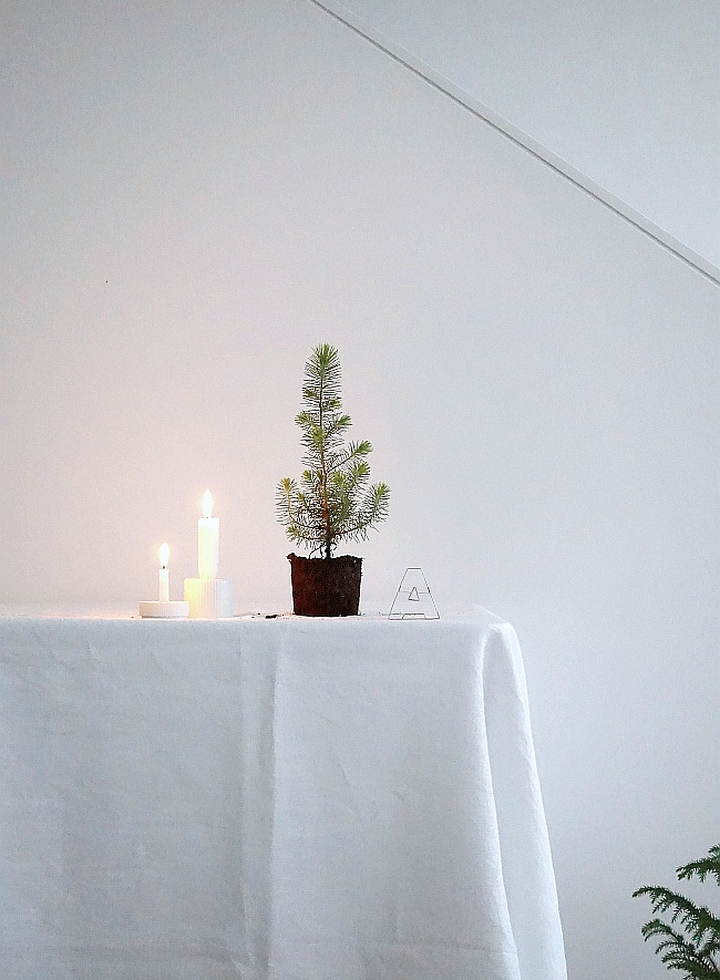 Minimal Christmas | photo: Sabine Wittig