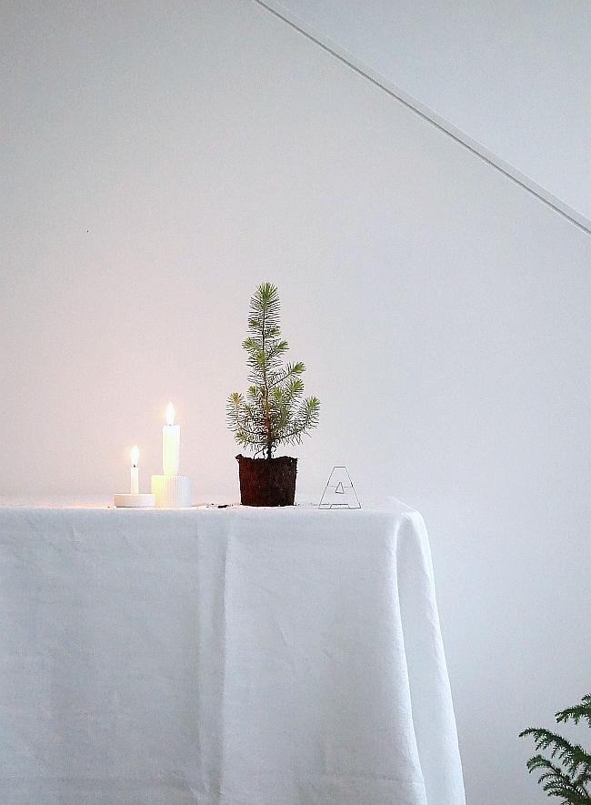 Minimal Christmas | photo: Sabine Wittig