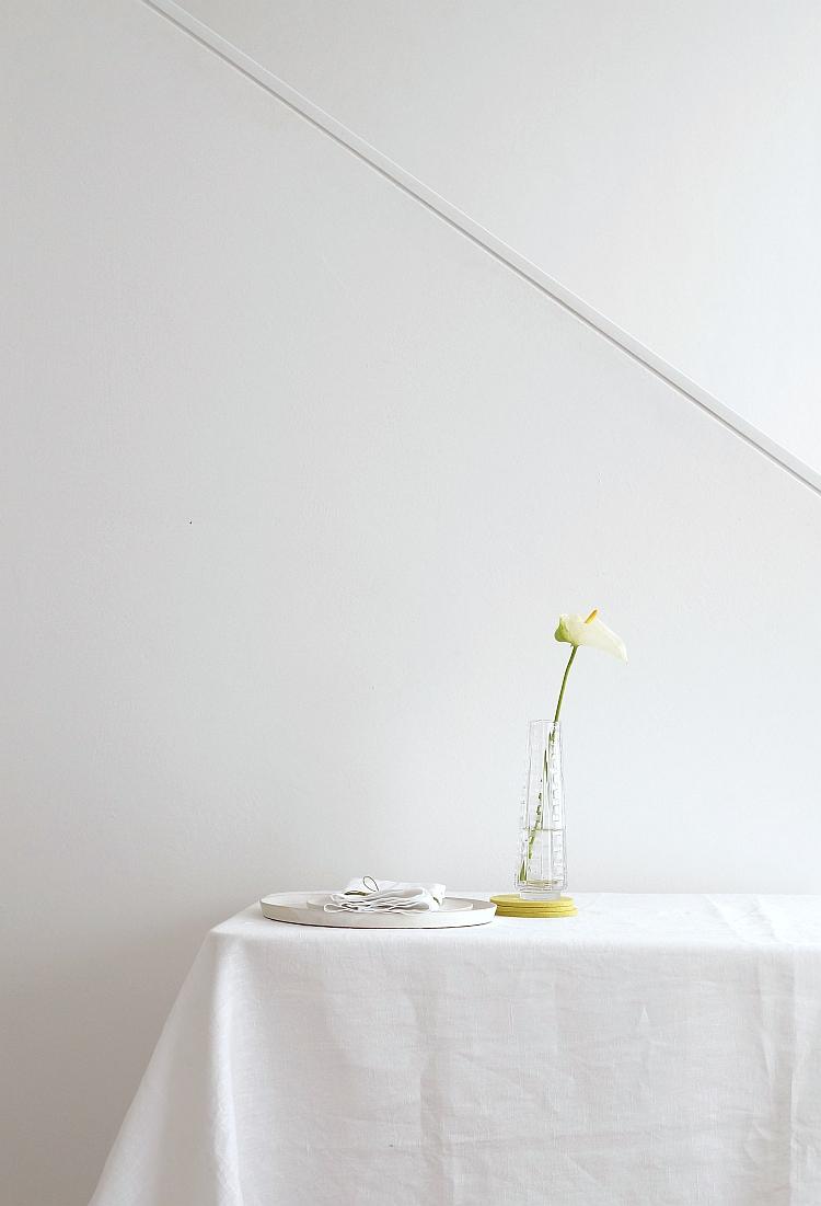 Stillleben mit Anthurium | Foto: Sabine Wittig