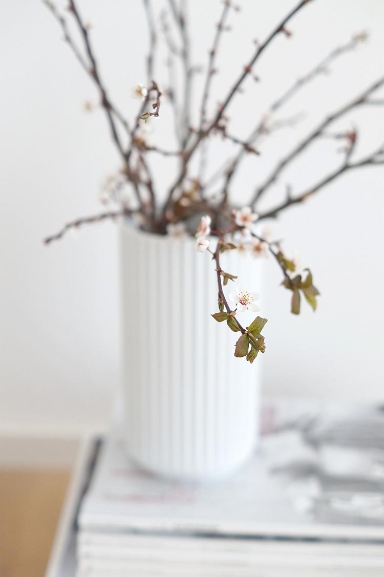 Frühling! | Foto: Sabine Wittig