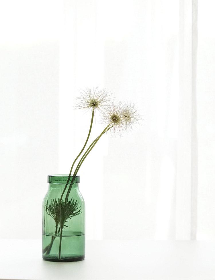 Blütenstände der Küchenschelle in einer Vintage Bülacher Flasche | Foto: Sabine Wittig