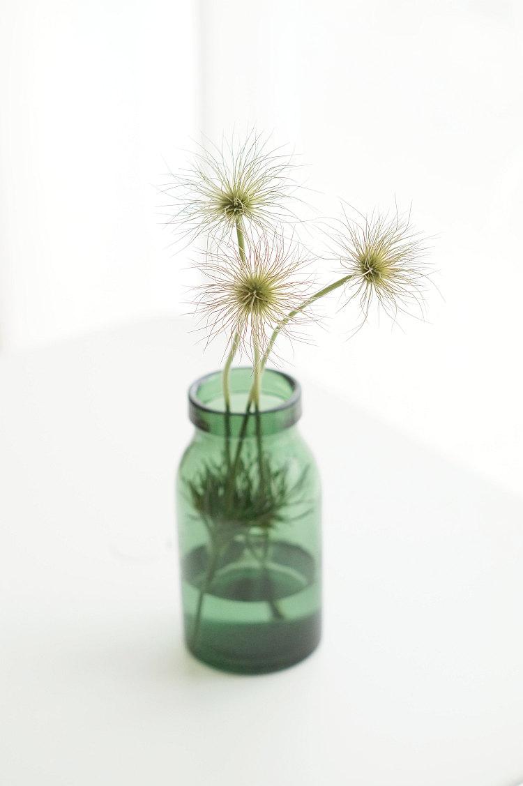 Blütenstände der Küchenschelle in einer Vintage Flasche aus der Glashütte Bülach | Foto: Sabine Wittigage F