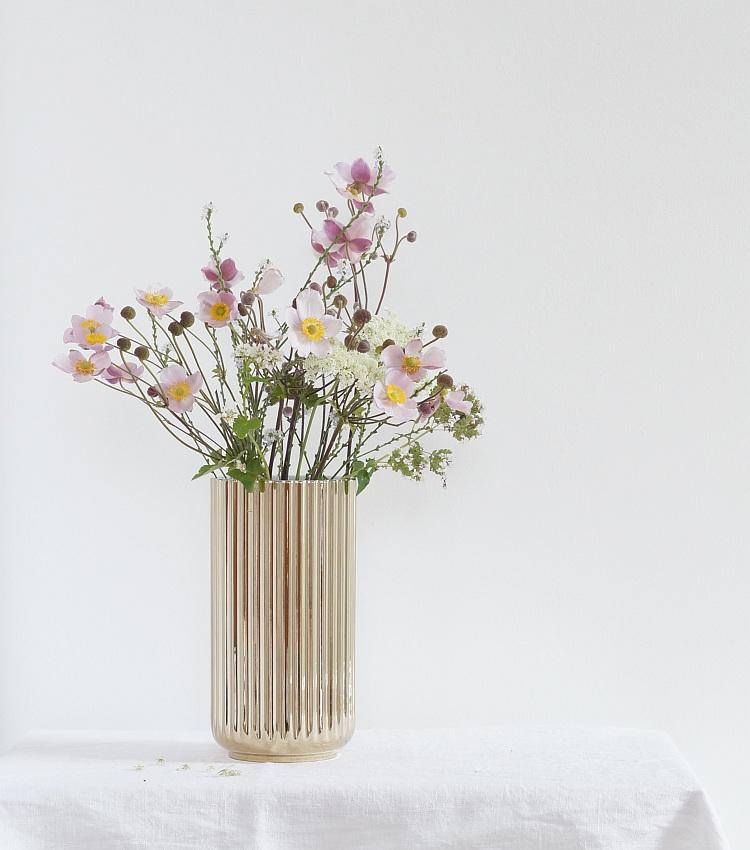 Rosa Herbstanemonen | Foto: Sabine Wittig