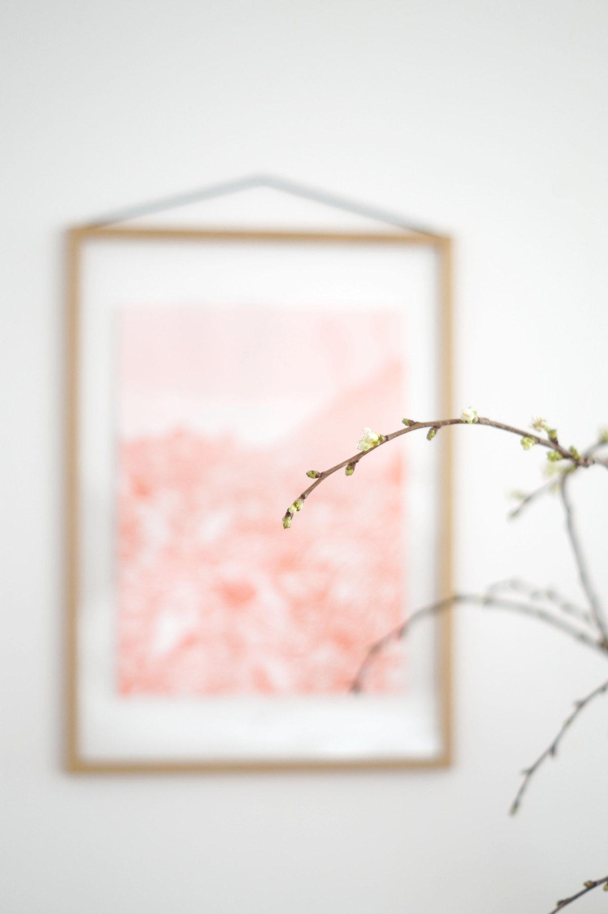 Frühlingsvorfreude | Foto: Sabine Wittig