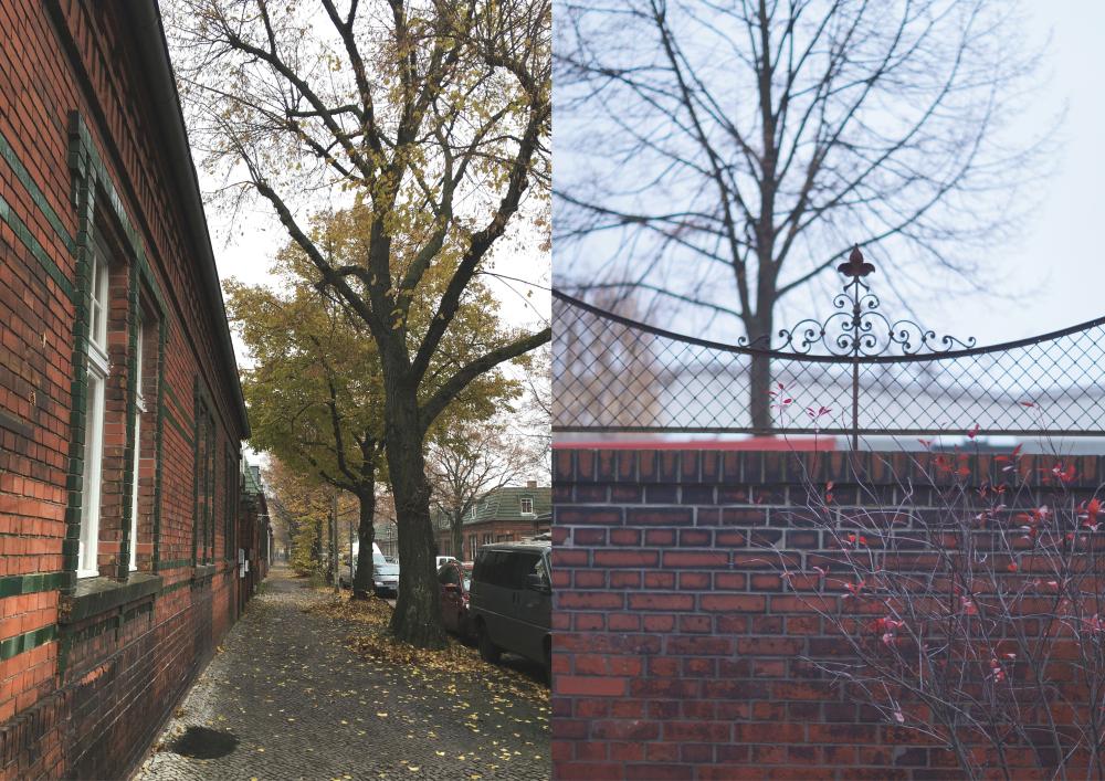 Berlin Weißensee im November 2017 | Fotos: Sabine Wittig