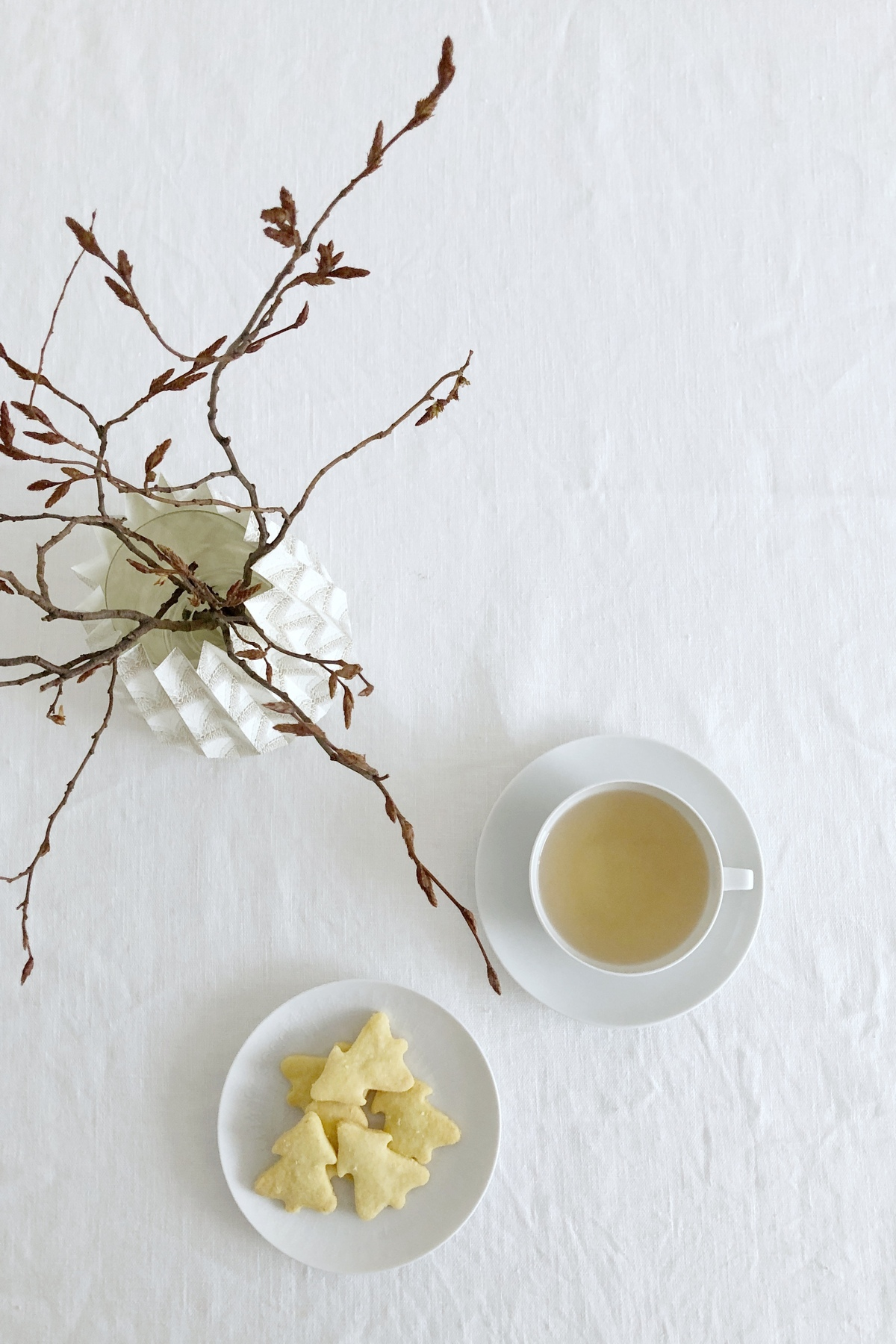 Mürbe Tannen und weißes Porzellan zur Teatime